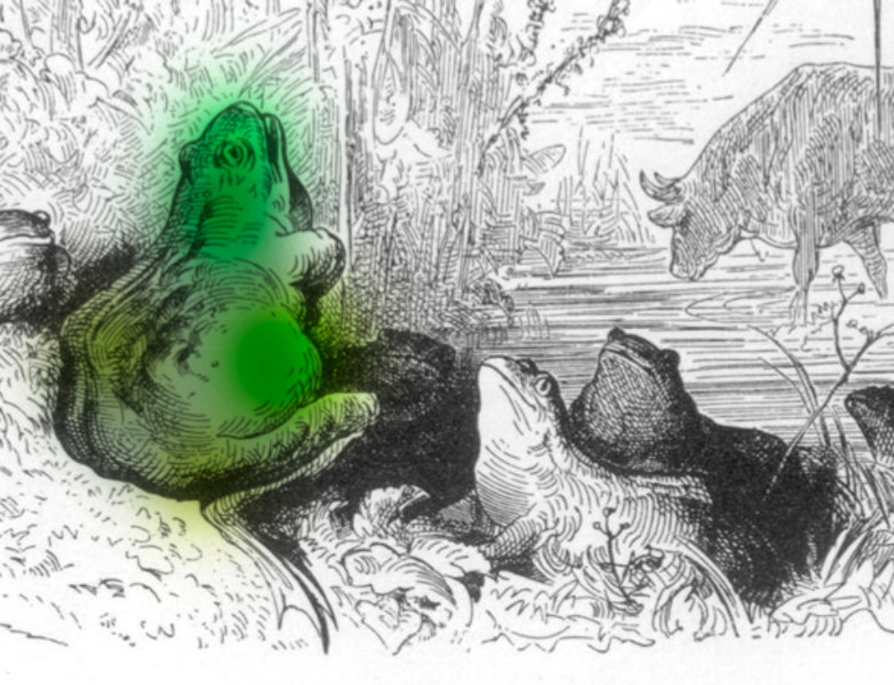 La rana y el buey